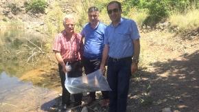 3 bin adet yavru balık gölete bırakıldı